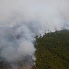 Indonezijoje dėl dūmų atšaukta keliasdešimt skrydžių