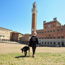 Italijos turistų gausiai lankytose miestų aikštėse želia žolė, žydi saulutės