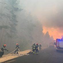 Ukrainos rytuose miško gaisras supleškino 110 namų, žuvo penki žmonės