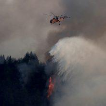 """Premjeras: Graikiją dėl siaučiančių miškų gaisrų ištiko """"ekologijos katastrofa"""""""