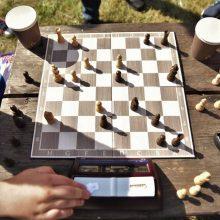 Šachmatų ir bokso mūšyje triumfavo draugystė