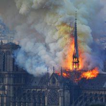 Lietuvos vadovai sukrėsti dėl Paryžiaus katedros gaisro