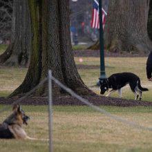 """J. Bideno """"pirmieji šunys"""" atsikraustė į Baltuosius rūmus"""