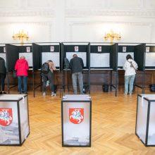 VRK suskaičiavo, kiek Seimo rinkimai kainavo kiekvienam rinkėjui