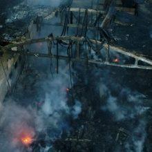 Alytaus meras: zuikis tikriausiai nugaišo nuo gaisro sukeltų padarinių