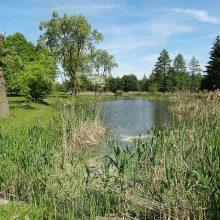 Marijampolėje atnaujinamas Pašešupio parkas