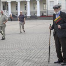 Mitingas S. Daukanto aikštėje: piktinamasi dėl nukabintos Generolo Vėtros lentos