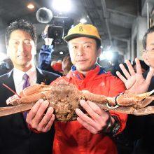 Snieginis krabas aukcione Japonijoje parduotas už 42 000 eurų