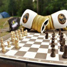 Boksas ir šachmatai suvienys jėgas unikaliame turnyre