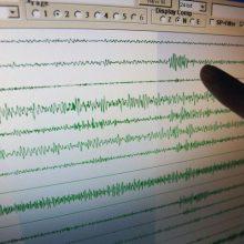 Prie Meksikos krantų įvyko 6 balų žemės drebėjimas