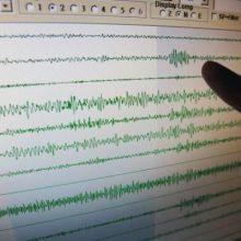 Pietų Čilę supurtė 6,1 balo žemės drebėjimas