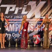 Čempionato laurus skynė šeimininkų atstovai