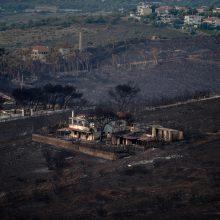 Graikija skaičiuoja baisiausių per kelis dešimtmečius gaisrų kainą