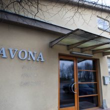 Skandalas Kauno rajone: Garliavos J. Lukšos gimnazija turi būti uždaryta