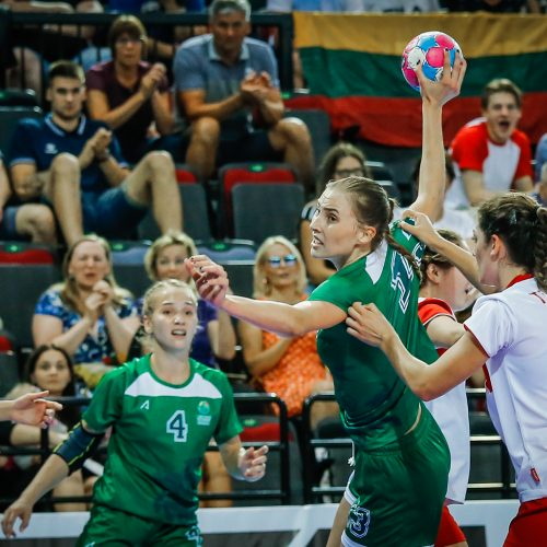 Lietuva-Turkija 23:30  © Vytauto Petriko nuotr.