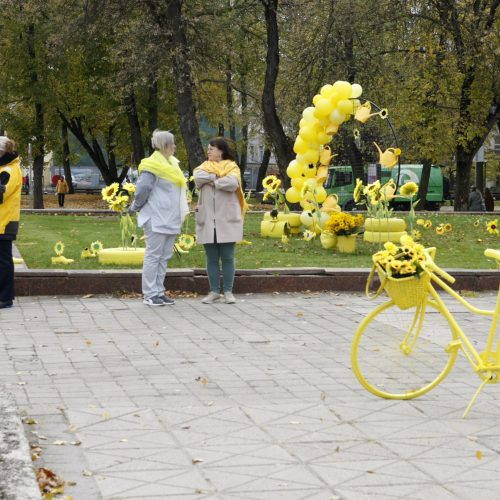 Uostamiesčio aikštės pražydo geltonai