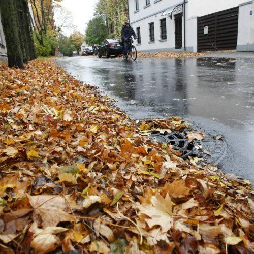Prapliupus lietui, krintantys lapai pridaro bėdų: technika gatvėse sukinėsis dažniau