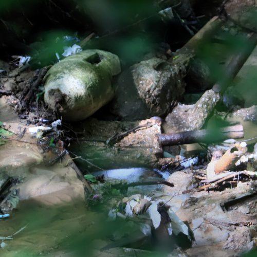 Aleksote rastas sprogmenų arsenalas  © Laimučio Brundzos nuotr.