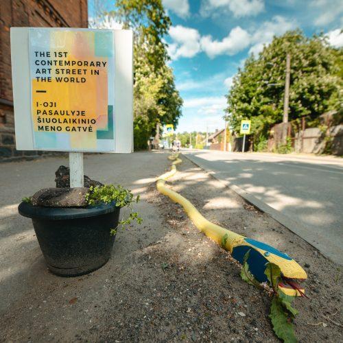 Pirmoji pasaulyje šiuolaikinio meno gatvė  © Eitvydo Kinaičio nuotr.