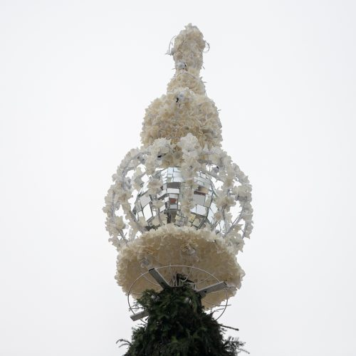 Kauno kalėdinės eglutės pristatymas  © Justinos Lasauskaitės nuotr.