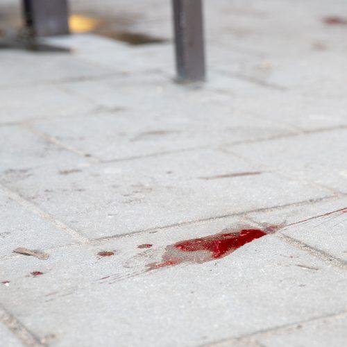 Kraujo klanas prie Kauno autobusų stoties  © Justinos Lasauskaitės nuotr.