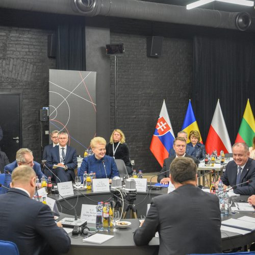D. Grybauskaitė – NATO valstybių vadovų susitikime  © Roberto Dačkaus / Prezidentūros nuotr.