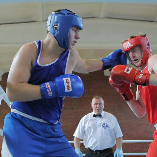 R. Tamulio bokso turnyro pusfinaliai   © Evaldo Šemioto nuotr.