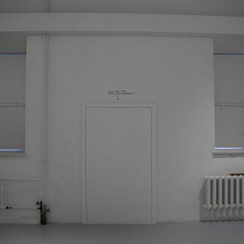 """Paroda """"Muziejus performanse""""  © P. Peleckio / Fotobanko nuotr."""