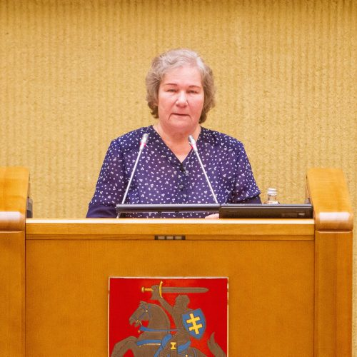 Gedulo ir vilties diena Seime  © I. Gelūno / Fotobanko nuotr.