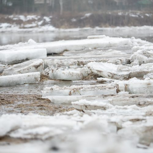 Ledo sangrūdos Radikiuose  © Vilmanto Raupelio nuotr.