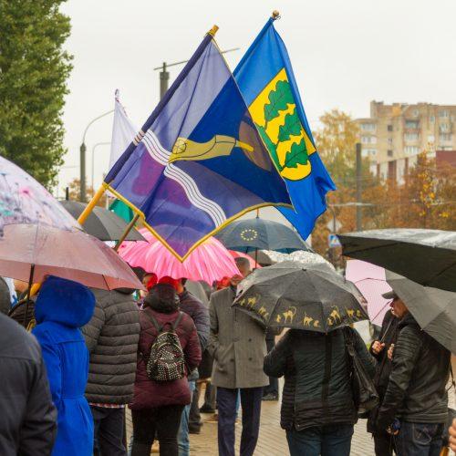 Piketas prieš planus dalį Kauno rajono teritorijos prijungti prie miesto  © Laimio Steponavičiaus nuotr.