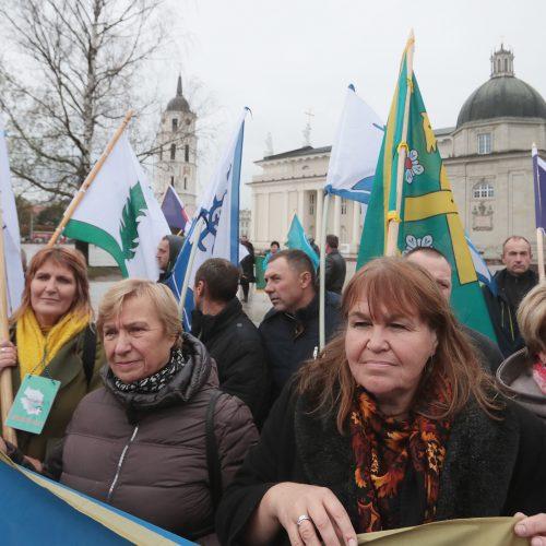 Kauno rajono gyventojai surengė piketą prie VRM