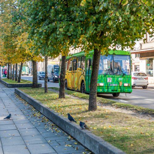 Išmargintas senasis troleibusas Kaune  © Laimio Steponavičiaus nuotr.