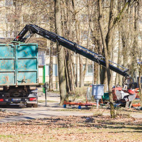 Ardomos Vytauto parko karuselės