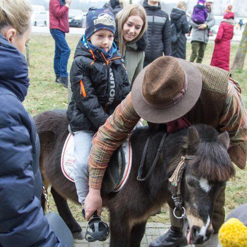 Gyvūnų paroda 2020  © Laimio Steponavičiaus nuotr.