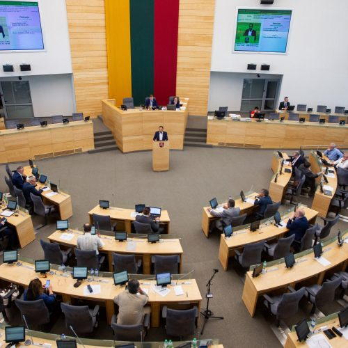 Seimo posėdis dėl P. Gražulio neliečiamybės  © P. Peleckio / Fotobanko nuotr.