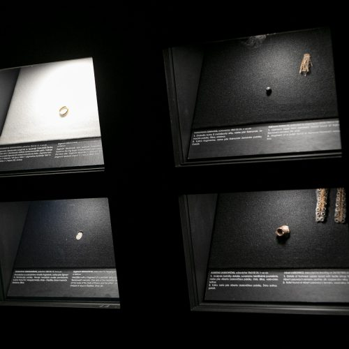 """Parodos """"Pažadinti: Gedimino kalne rastų sukilėlių istorija"""" pristatymas  © P. Peleckio / Fotobanko nuotr."""