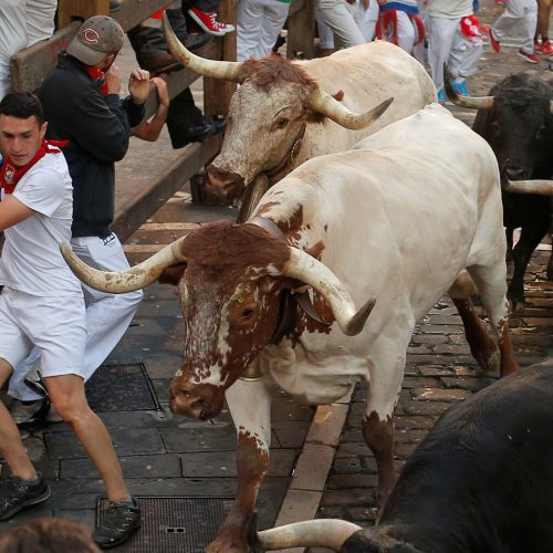 Bėgimas su buliais Pamplonoje  © Scanpix nuotr.