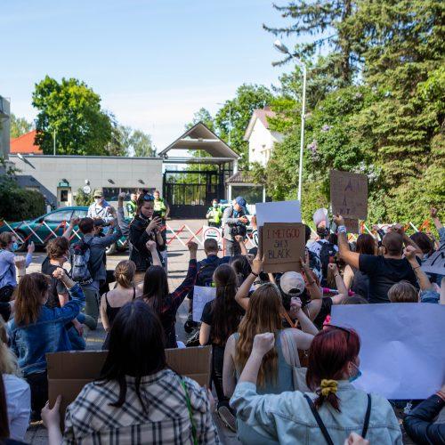 Vilniuje – eisena, smerkianti rasizmą  © D. Labučio / ELTOS, I.Gelūno/ Fotobanko nuotr.
