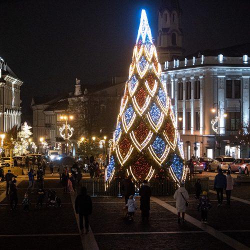 Sostinės Rotušės aikštėje įžiebta Kalėdų eglė  © G. Skaraitienės/Fotobanko nuotr.