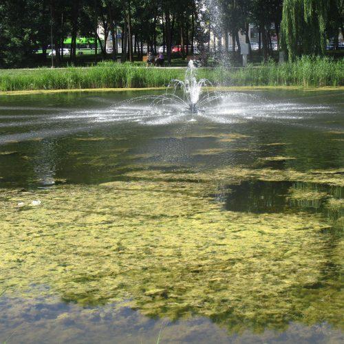 Dumblėtas Kalniečių parko tvenkinys  © Valdo Kasperavičiaus nuotr.