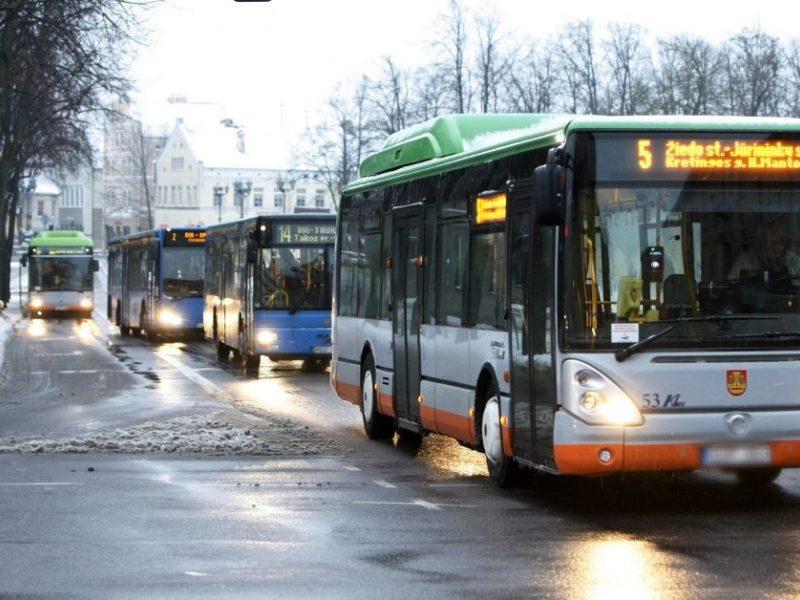 """Teismas pripažino: """"Klaipėdos autobusų parkui"""" skirtos per didelės sankcijos"""