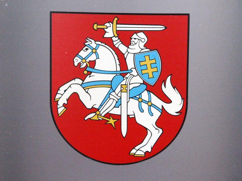 Antrasis Seimo rinkimų turas: galimybę balsuoti turi visi