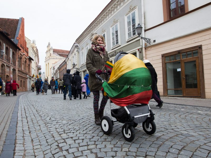 Ekspertė: jeigu žmonės susirūpinę Lietuvos ateitimi, tai turėtų gimdyti daugiau vaikų