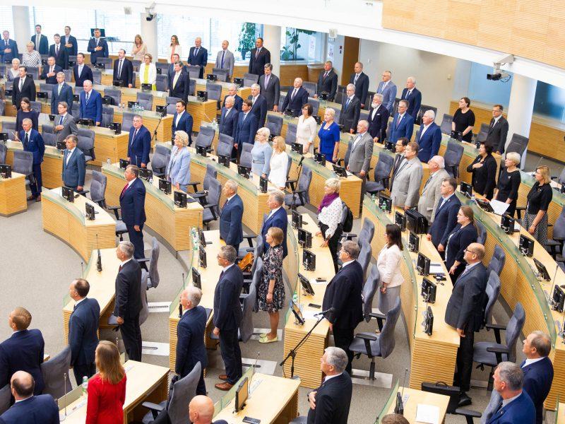 R. Karbauskis apie Seimo narių mažinimą: tai – ne populizmas