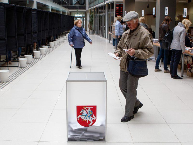 Mažosios partijos neslepia ambicijų: buriasi ir ruošiasi rinkimams
