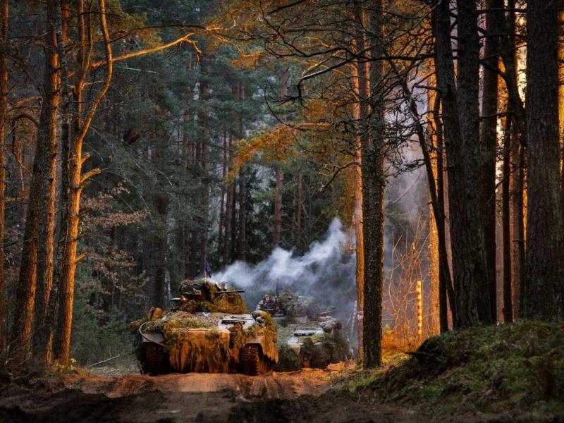 Poligonų plėtrai leista kirsti mišką Švenčionių ir Jonavos rajonuose