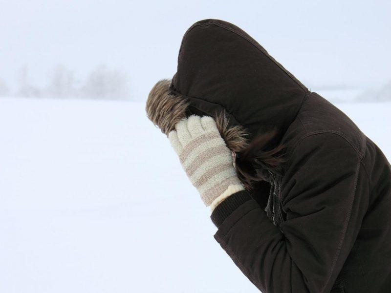 Sinoptikai įspėja: į Lietuvą ateina pūga, kils stiprus vėjas