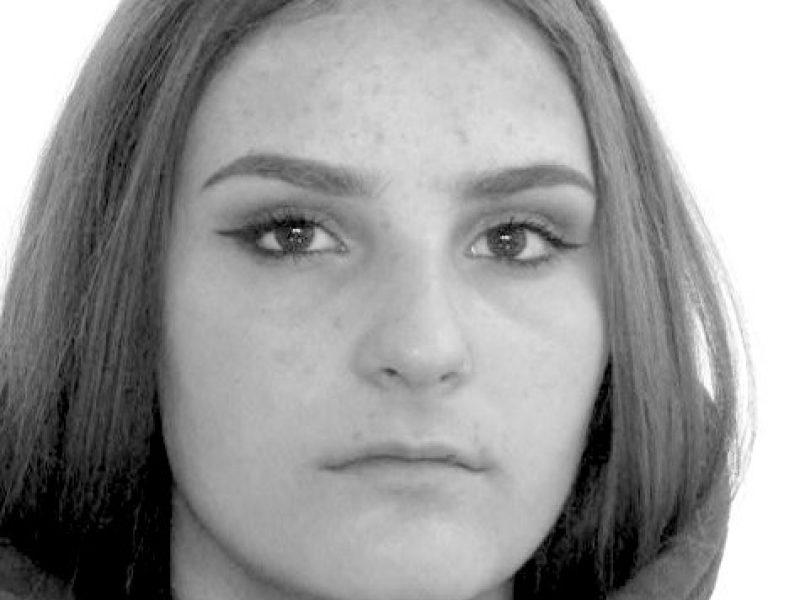 Vilniuje dingo šešiolikmetė: išėjo į mokyklą ir namo negrįžo