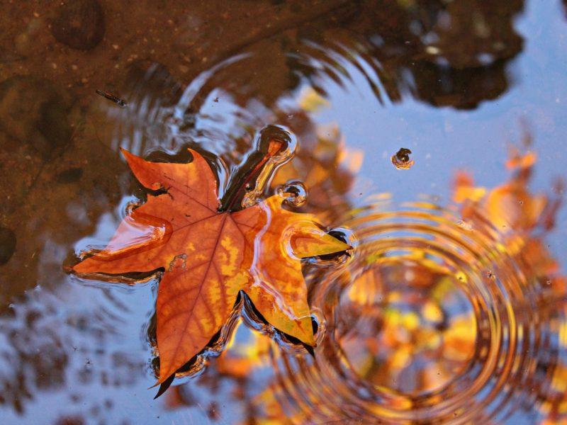 Orai: į Lietuvą plūsta rudeniška vėsa ir lietūs